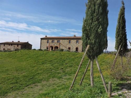 Appartamento in Cinigiano - GR - (Lotto 04)