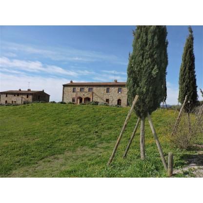 Appartamento in Cinigiano - GR - (Lotto 05)